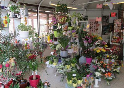 Blumenpavillon