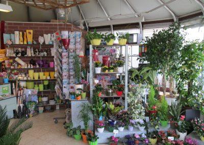 Blumenpavillon-IMG_0351